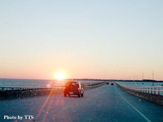 TTS道路探検活動のための英語用...